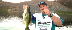 DVL w/Bill Siemantel Part 4: Spro Baby BBZ Double Rig