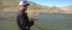 Spring Time Jerkbait Tips With Randy McAbee