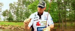 Post-Spawn Tips w/Russ Lane At Lake Lanier Part 1