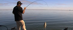 New Shimano & G. Loomis Products For ICAST 2012
