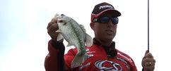 War Eagle Spinnerbaits at Table Rock with Britt Myers