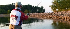 Fishing the Strike King Tour Grade Buzzbait w/ Menendez