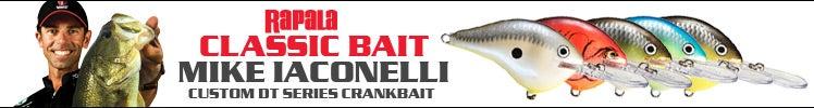 Rapala Classic Bait - Mike Iaconelli Custom DT Series Crankbait