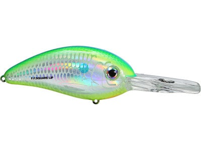 Bomber Fat Free Shad Deep Diving Square Bill