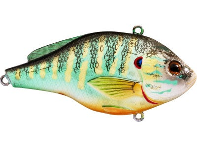 LIVETARGET Pumpkinseed Vibration Trap