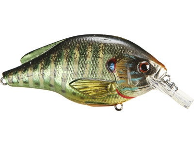 LIVETARGET Pumpkinseed Square Bill Crankbait