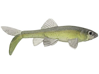 Little Creeper All American Trash Fish Swimbaits 2pk