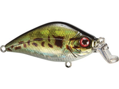 River2Sea Snub Crankbait