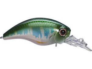 Evergreen WH Crankbait