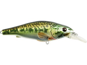 LIVETARGET Largemouth Bass Crankbait