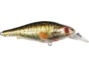 LIVETARGET Smallmouth Bass Crankbait