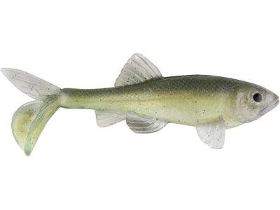 Little Creeper Fatty Trash Fish