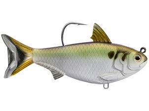 LIVETARGET Gizzard Shad Swimbait