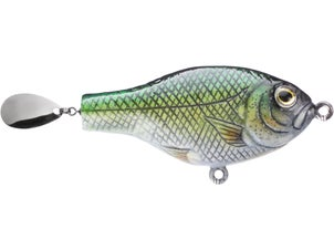 Moreau Baits Drop Spin Tournament Series