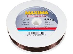 Maxima Chameleon Line