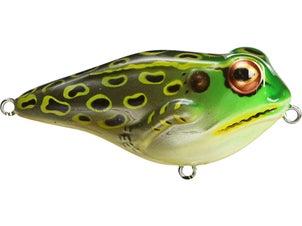 Rebel Frog R