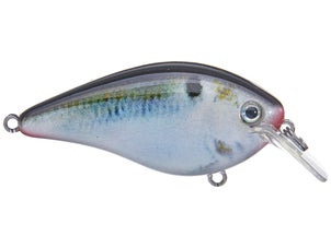 Strike King KVD HC Square Bill Silent Crankbait